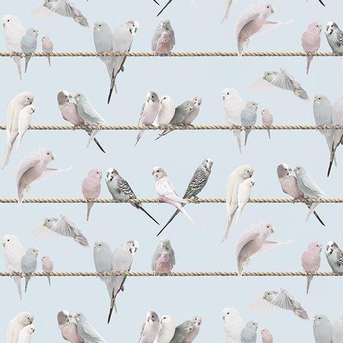 """Tapete """"Lovebirds, blue"""" von Koziel aus Frankreich 1"""